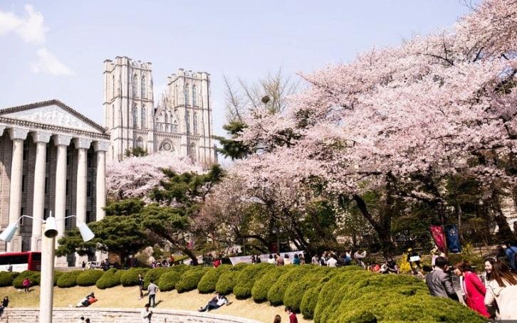 Beasiswa Kuliah di Korea